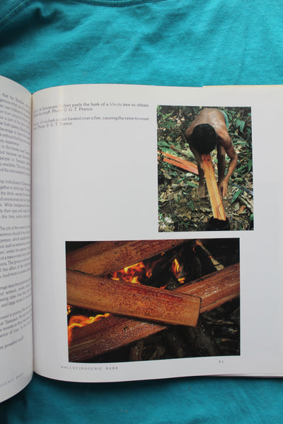 Bark: The Formation, Characteristics and Uses of Bark Around the World [Hardcover] Prance, Anne E.; Prance, Ghillean T. and Sandved, Kjell B.  Prance, Anne E.; Prance, Ghillean T.  First Edition