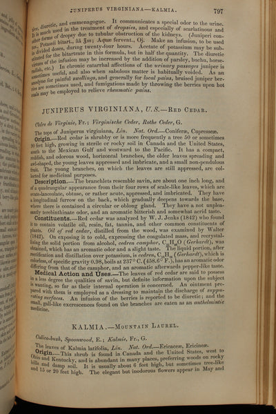 (BARGAIN Dispensatory) - The National Dispensatory, containing the natural history, chemistry, pharmacy, actions and uses of medicines. Stille, Alfred, and John M. Maisch  - 1880