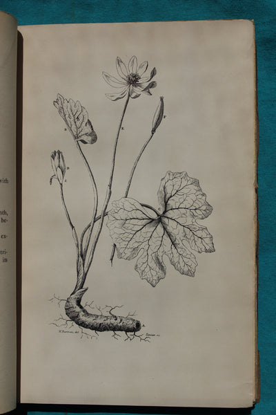 An Investigation of the Properties of the Sanguinaria Canadensis; or Puccoon. Travels through the Interior Parts of North America in the Years 1766, 1767, and 1768. With: Antonius STÖRCK: Libellus de Usu Medico Pulsatillae Nigricantis. DOWNEY, William
