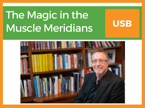 The Magic in the Muscle Meridians | Presented by Kevin 'Niv' Farrow | Filmed 25th Feb 2017 | USB