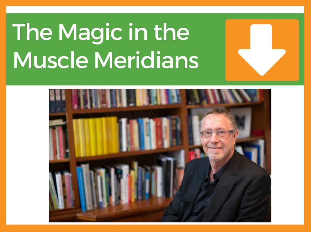The Magic in the Muscle Meridians | Presented by Kevin 'Niv' Farrow | Filmed 25th Feb 2017 | 1 point