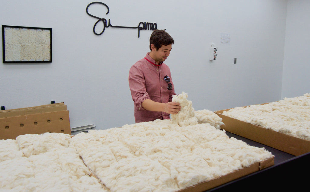 Authenticity 50 founder learning how Supima cotton compares to Egyptian cotton