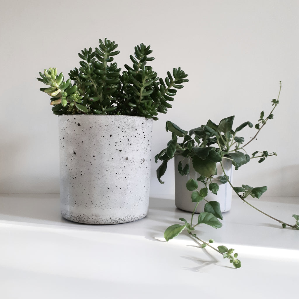 Concrete Planter - FUME Products