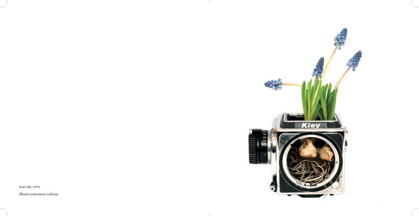 Photosynthesis BOOK - Fifty Camera Flowers by Natalie Iwanycki Ahlstrand & Bjarke Ahlstrand