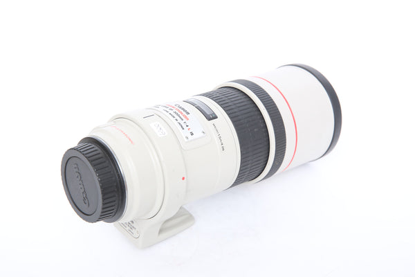 Canon EF 300mm f4 IS USM