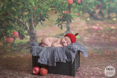 Apple orchard photo background