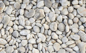 Beach Stones and Pebbles Photo Backdrop