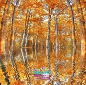 Backdrop - Painted Fall Reflection