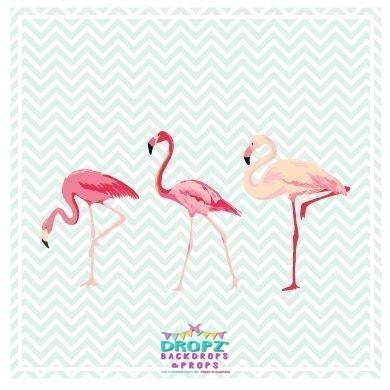 Backdrop - Three Flamingo's