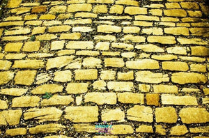 Backdrop - Yellow Brick Pavers