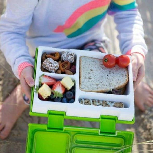 Rainebeau Kiwi Fruit Lunchbox - phunkyBento