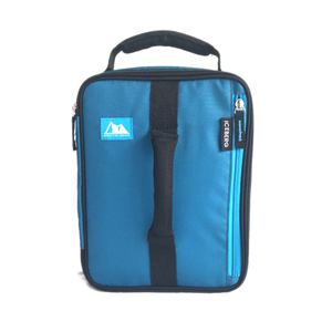 Arctic Zone Insulated Lunch Bag - Sapphire Blue - phunkyBento
