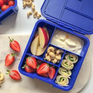 Little Lunch Box Co - Bento 5 - Shark - phunkyBento
