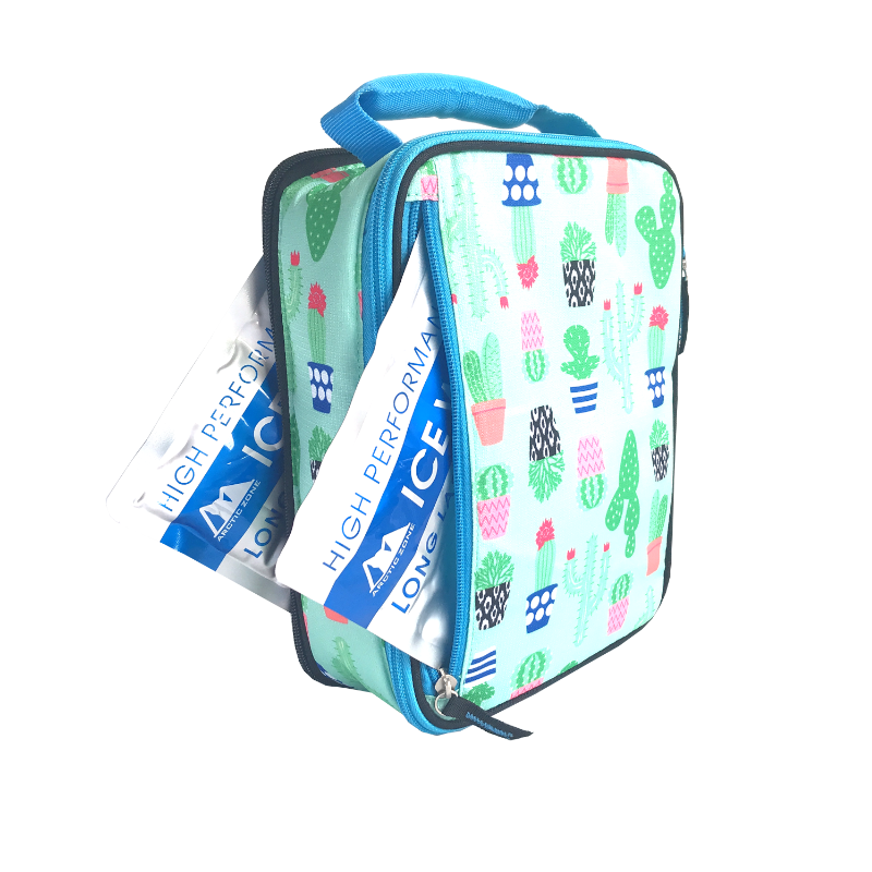 Arctic Zone Insulated Lunch Bag - Cactus - phunkyBento