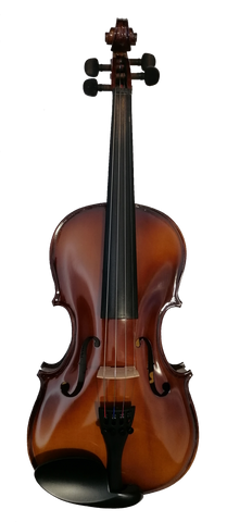 Flame Lily Matt Finish Violin Outfit