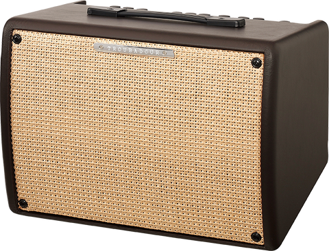 Ibanez Troubadour 30watt Acoustic guitar Amplifier