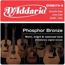 D'Addario 5-String Acoustic Bass Phosphor Bronze Strings