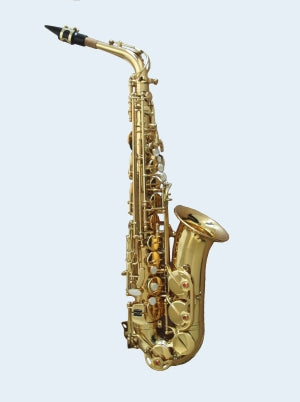Talent Eb Alto saxophone clear laquer. On super special