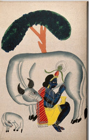 Krishna-milking-a-cow-while-the-calf-looks Canvas