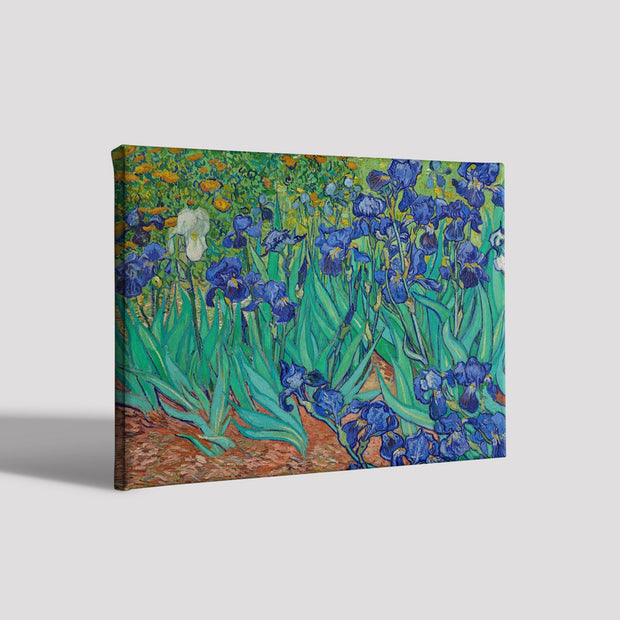 Irises growing in a garden By Van Gogh