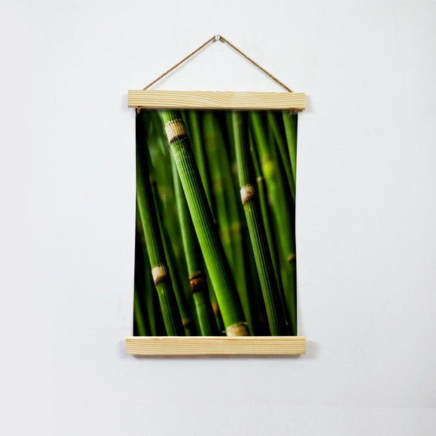 Green Bamboo Hanging Canvas