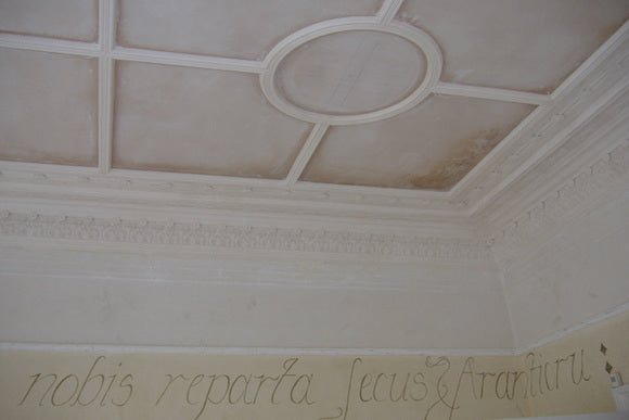 Decorative Plaster Restoration | Reproduction Plaster Company