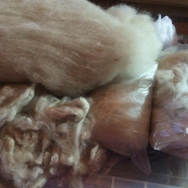Fleece Processing Techniques
