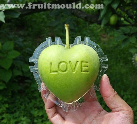 "Heart apple mold with  ""love"" (5 pieces free shipping)"