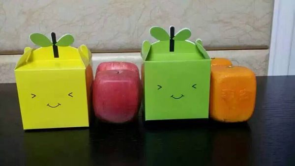 Square shaped apple molds for sale (5 molds with free shipping)