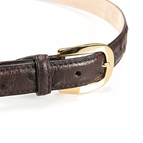 Ostrich Leather Belt 22 MM (Gold Buckle) - Karoo Classics