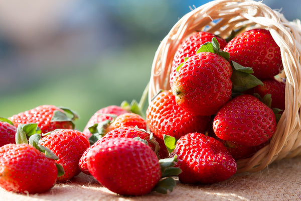 Strawberries - Punnet