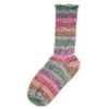 Lane Cervinia Forever Sock Yarn