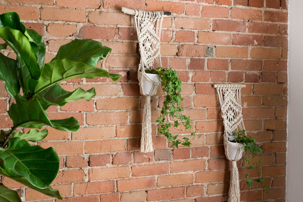 Plant Hanger Workshop - June 25, 2017