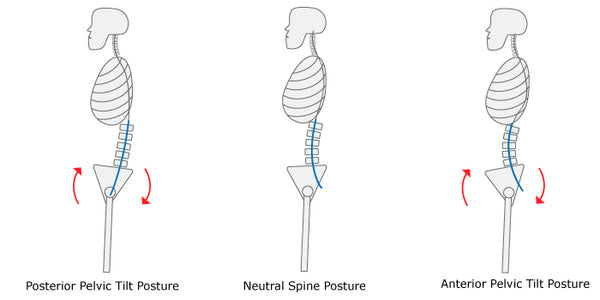 Neutral spine/pelvis