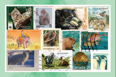 Fauna of the World Stamps Postcard