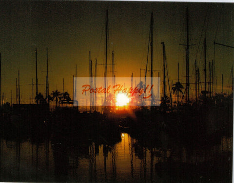 Ilikai Marina Sunset Postcard