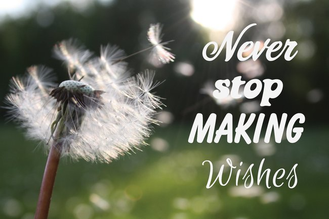 Never Stop Making Wishes Postcard