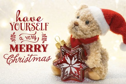 Christmas Teddy Postcard