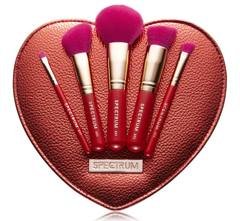 5 PIECE VALENTINES SWEETHEART BRUSH SET & BAG