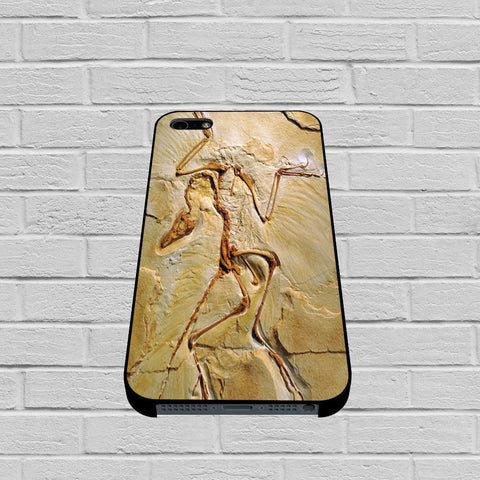 Archaeopteryx Fossil case of iPhone case,Samsung Galaxy