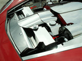 2005-2007 C6 & 2006-2013 Z06 Corvette - Radiator Cover, Polished 2Pc Component American Car Craft