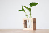 Test Tube Planter