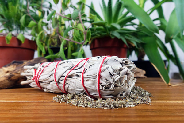 White Sage Smudge Stick 5-6""