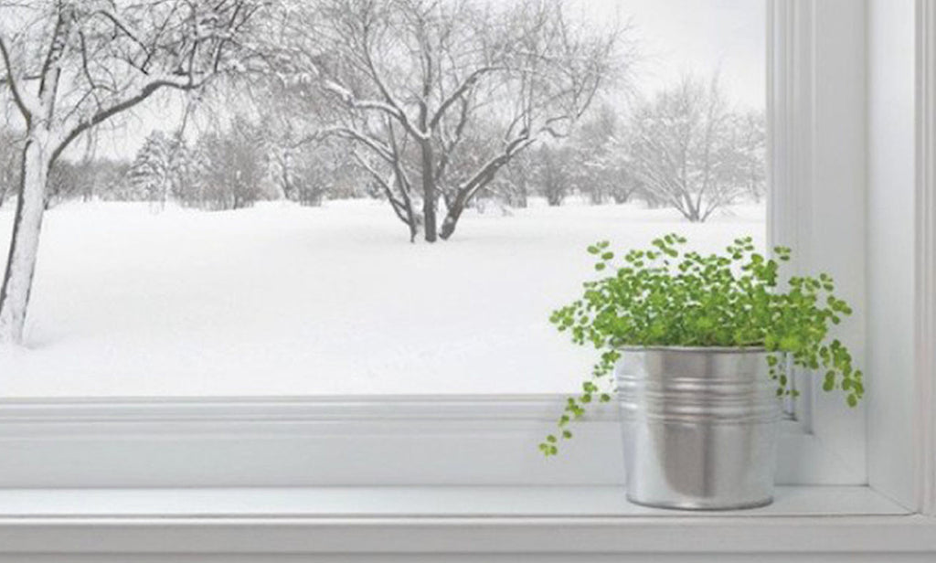 Winter's Here: Do You Have a Humidifier?