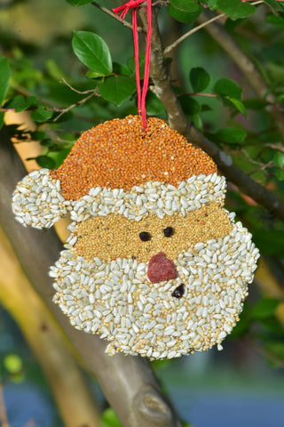 Bird Seed Santa Christmas Cookie