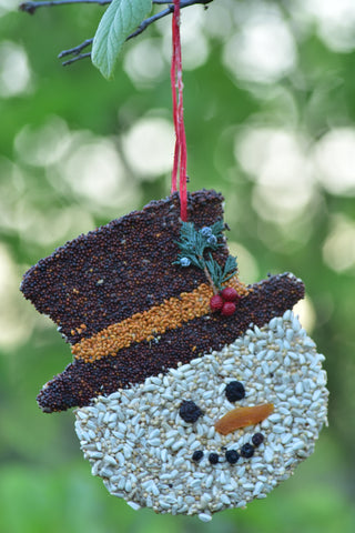 Bird Seed Frosty Christmas Cookie