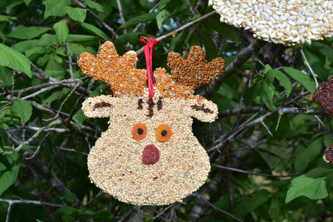 Bird Seed Rudolph Christmas Cookie