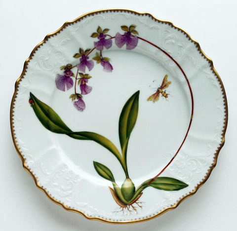 Orchid #6 Dinner Plate