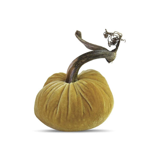Butter Pumpkin- 3 inch
