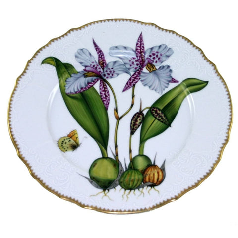 Orchid #2 Dinner Plate